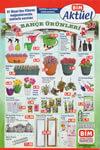 BİM 1 Nisan 2016 Aktüel Ürünler Katalogu