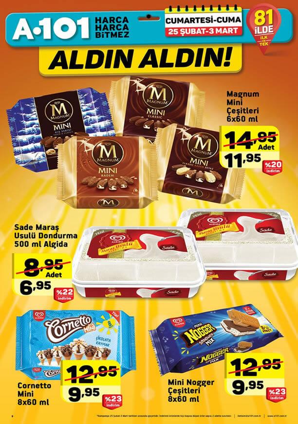 A101 25 Şubat - 3 Mart 2017 Fırsatları - Dondurma Fiyatları