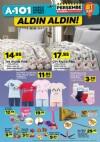 A101 8 Haziran 2017 Katalogu - JWIN Ney Eğitim Seti